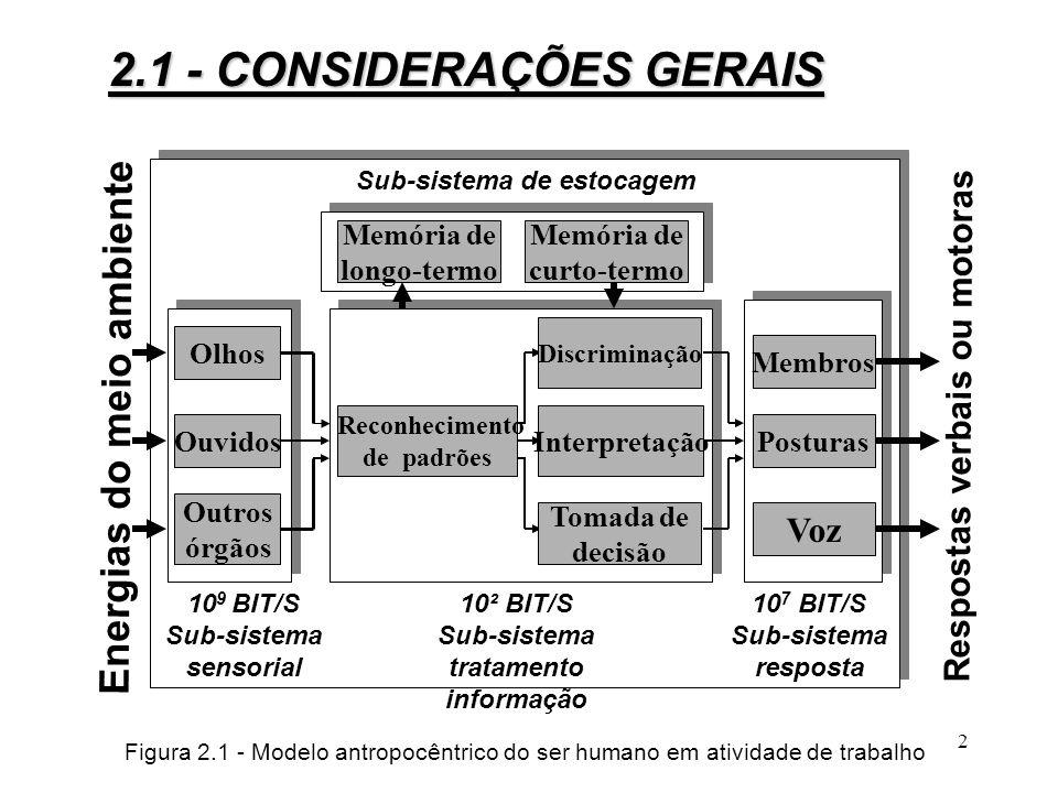 Respostas verbais ou motoras tratamento informação