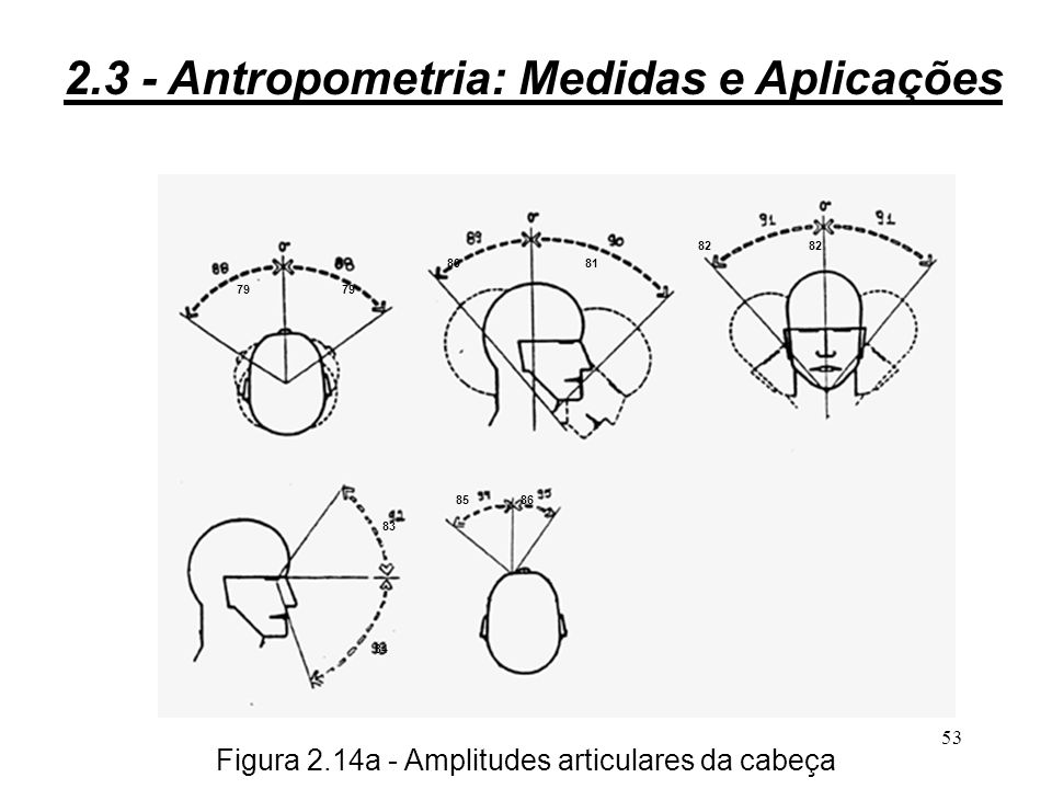 Figura 2.14a - Amplitudes articulares da cabeça