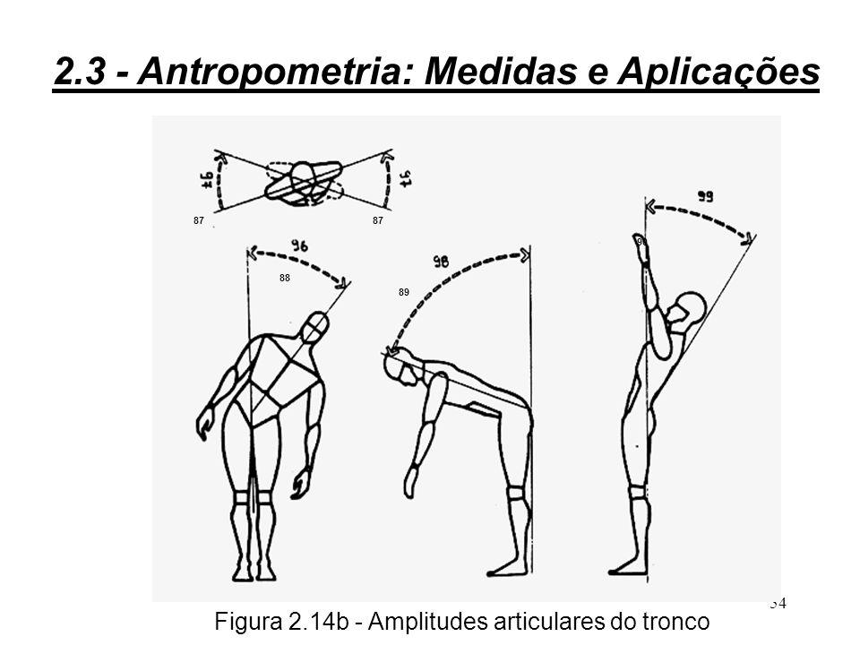 Figura 2.14b - Amplitudes articulares do tronco