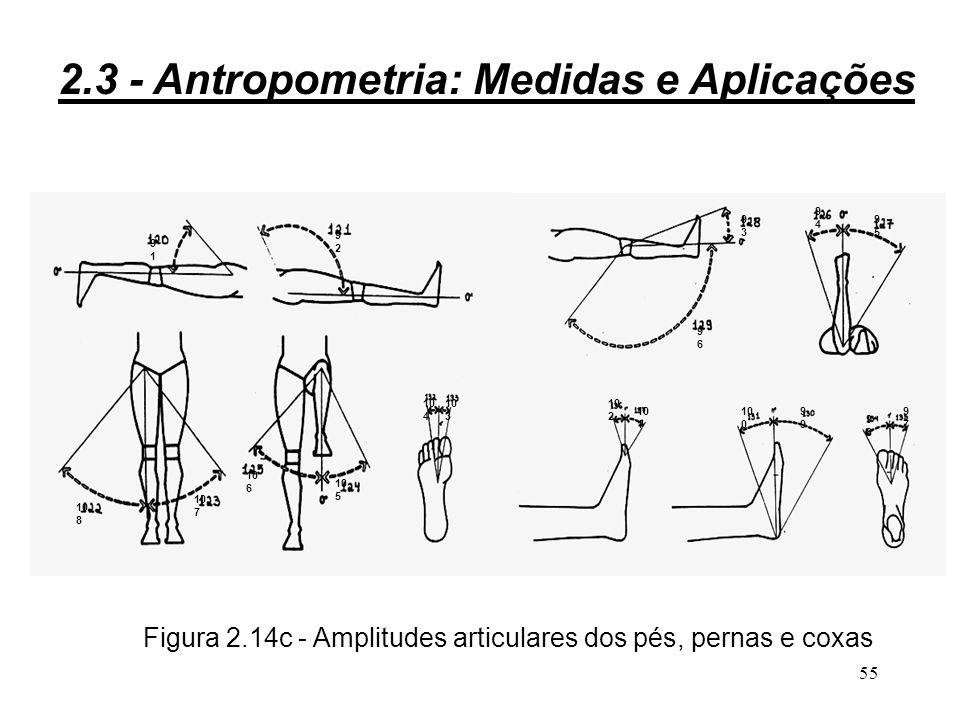 Figura 2.14c - Amplitudes articulares dos pés, pernas e coxas