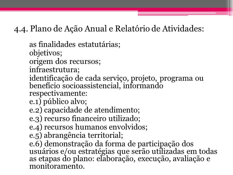 4.4. Plano de Ação Anual e Relatório de Atividades: