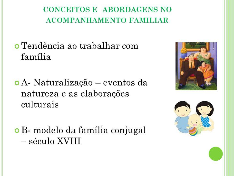conceitos e abordagens no acompanhamento familiar