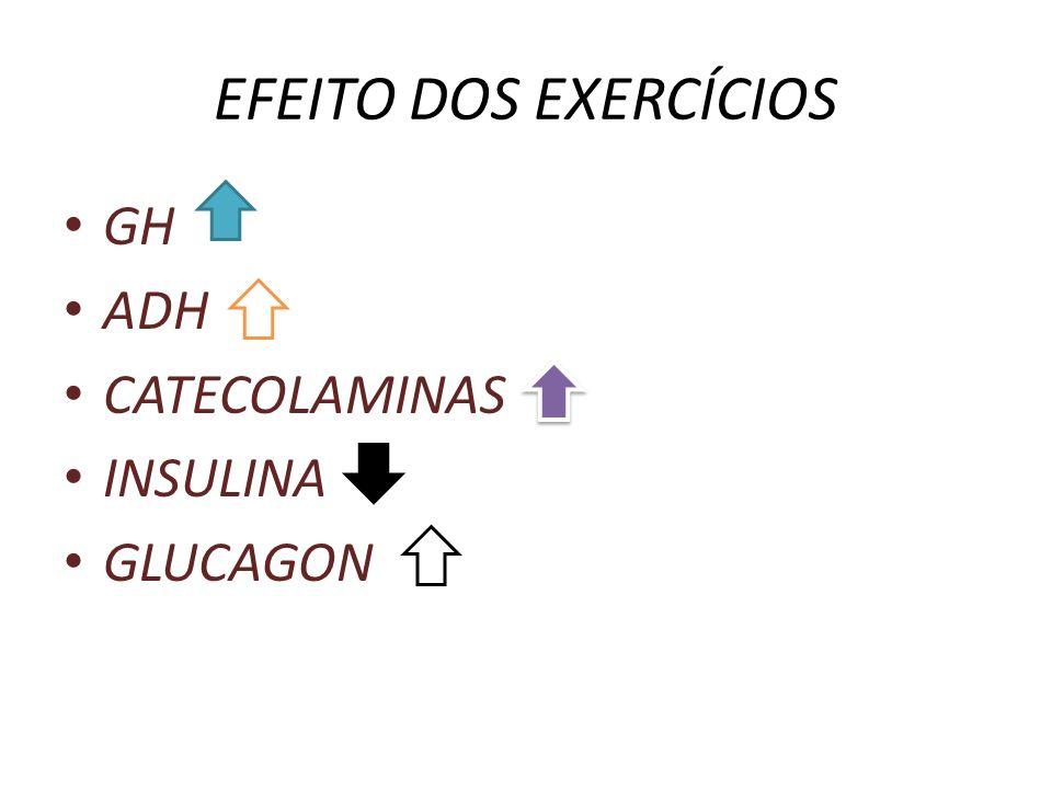 EFEITO DOS EXERCÍCIOS GH ADH CATECOLAMINAS INSULINA GLUCAGON