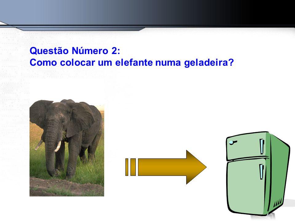 Questão Número 2: Como colocar um elefante numa geladeira