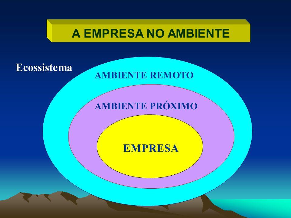 A EMPRESA NO AMBIENTE Ecossistema EMPRESA AMBIENTE REMOTO