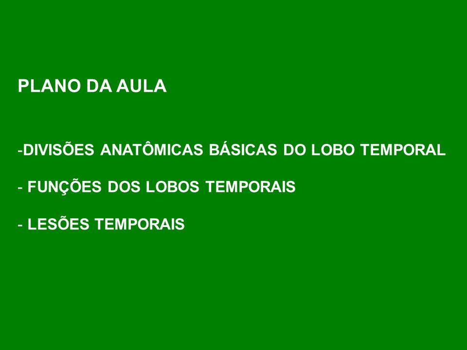 PLANO DA AULA DIVISÕES ANATÔMICAS BÁSICAS DO LOBO TEMPORAL