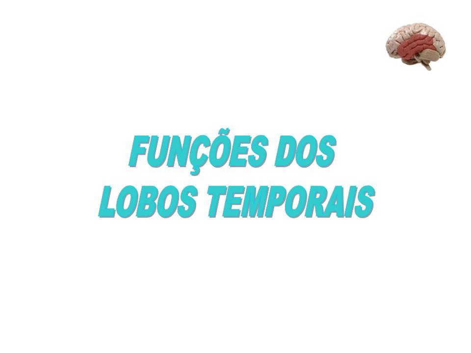 FUNÇÕES DOS LOBOS TEMPORAIS