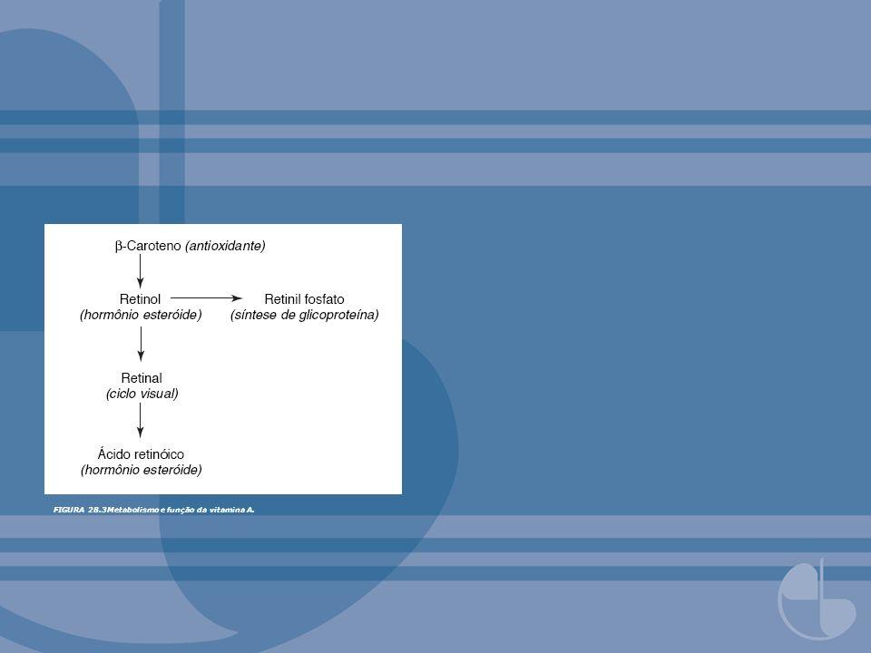 FIGURA 28.3Metabolismo e função da vitamina A.