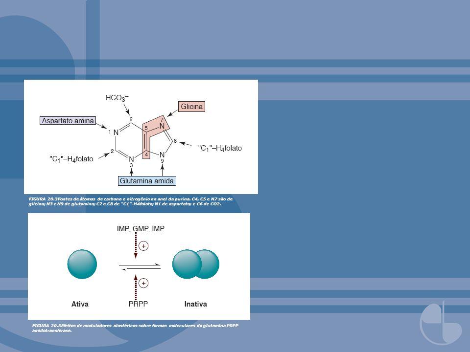FIGURA 20. 3Fontes de átomos de carbono e nitrogênio no anel da purina