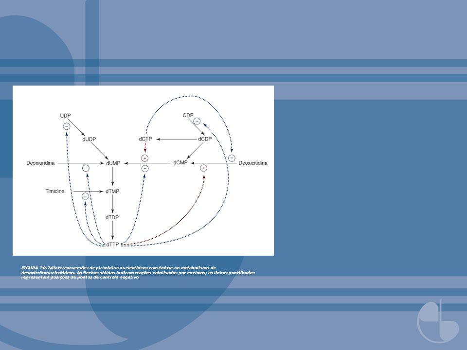 FIGURA 20.24Interconversões de pirimidina nucleotídeos com ênfase no metabolismo de desoxirribonucleotídeos.
