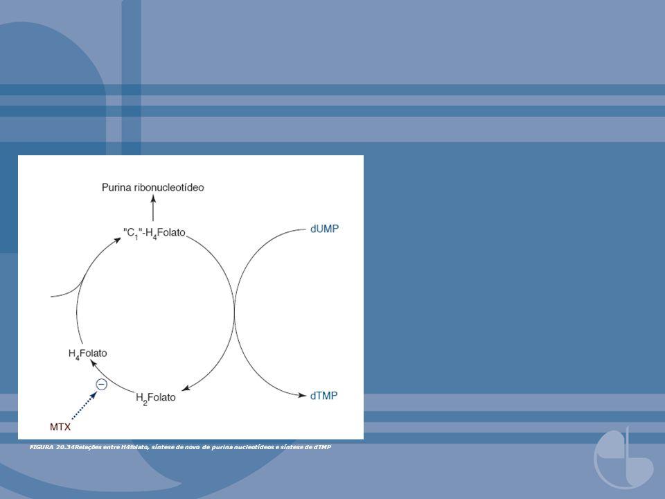 FIGURA 20.34Relações entre H4folato, síntese de novo de purina nucleotídeos e síntese de dTMP