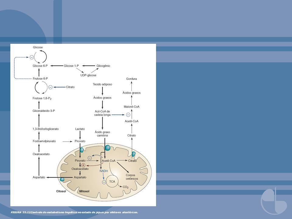 FIGURA 22.11Controle do metabolismo hepático no estado de jejum por efetores alostéricos.