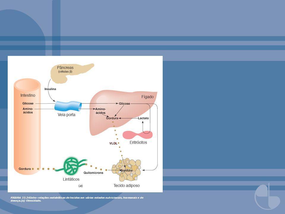FIGURA 22.24Inter-relações metabólicas de tecidos em vários estados nutricionais, hormonais e de doença.(a) Obesidade.