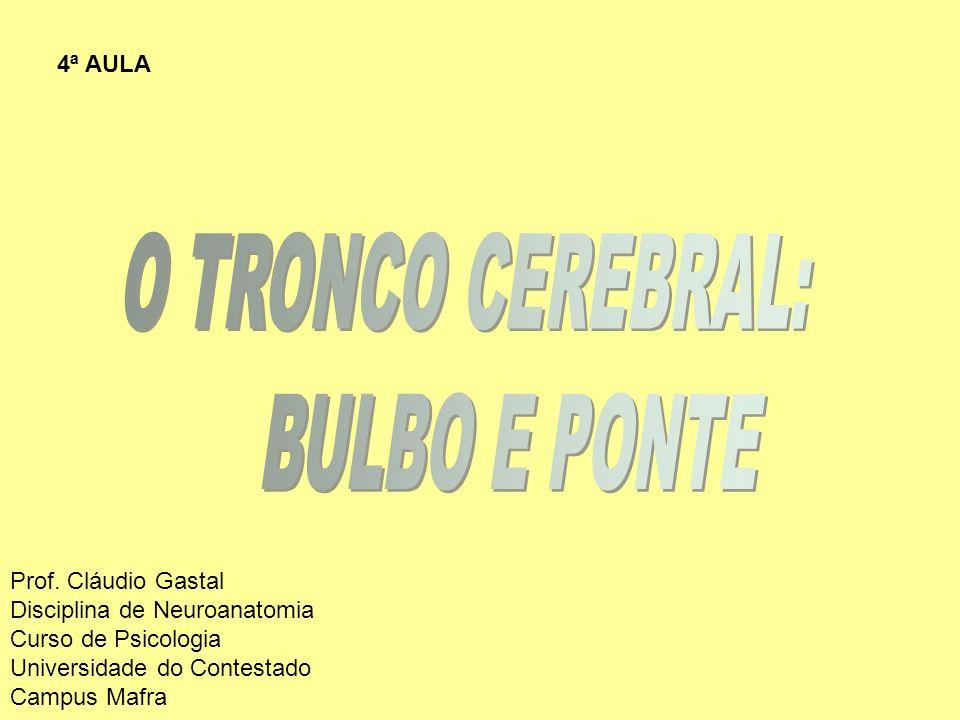 O TRONCO CEREBRAL: BULBO E PONTE 4ª AULA Prof. Cláudio Gastal