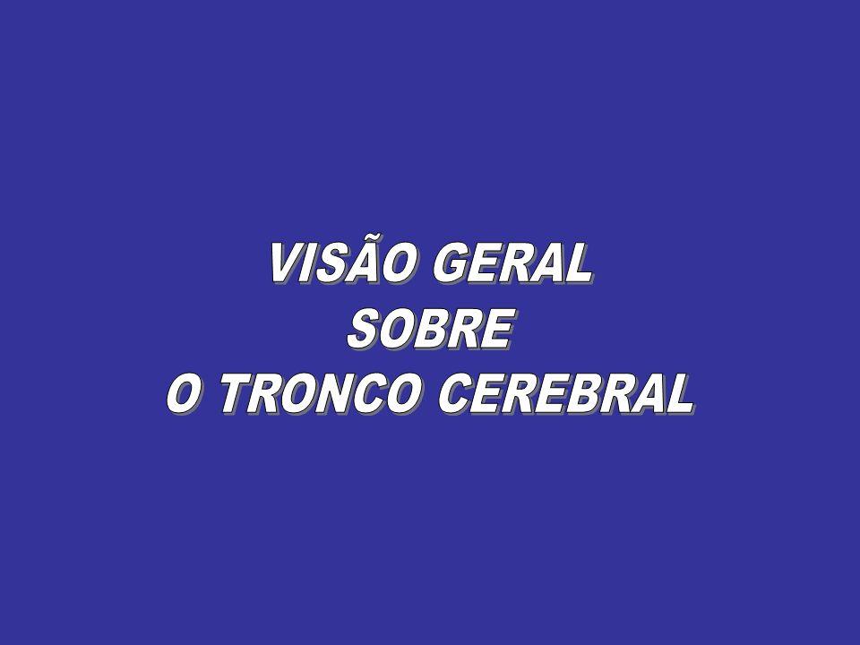 VISÃO GERAL SOBRE O TRONCO CEREBRAL