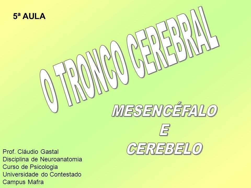 O TRONCO CEREBRAL MESENCÉFALO E CEREBELO 5ª AULA Prof. Cláudio Gastal