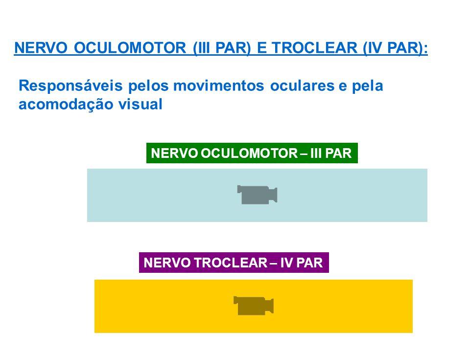 NERVO OCULOMOTOR (III PAR) E TROCLEAR (IV PAR):