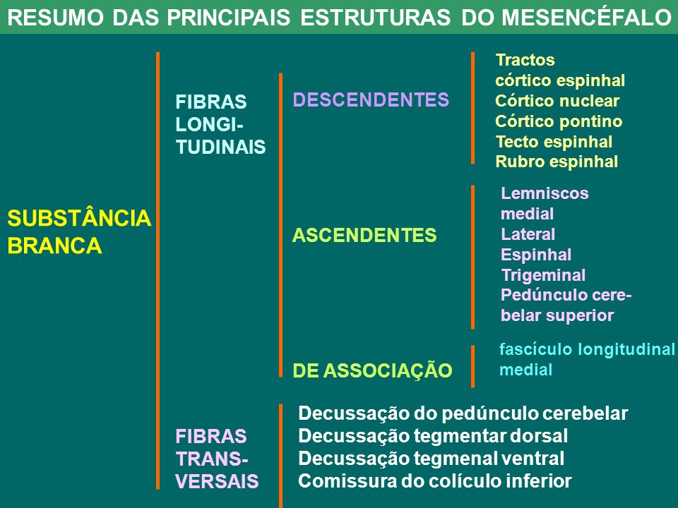 RESUMO DAS PRINCIPAIS ESTRUTURAS DO MESENCÉFALO