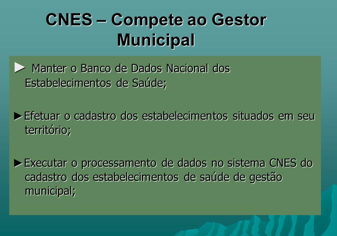 CNES – Compete ao Gestor Municipal