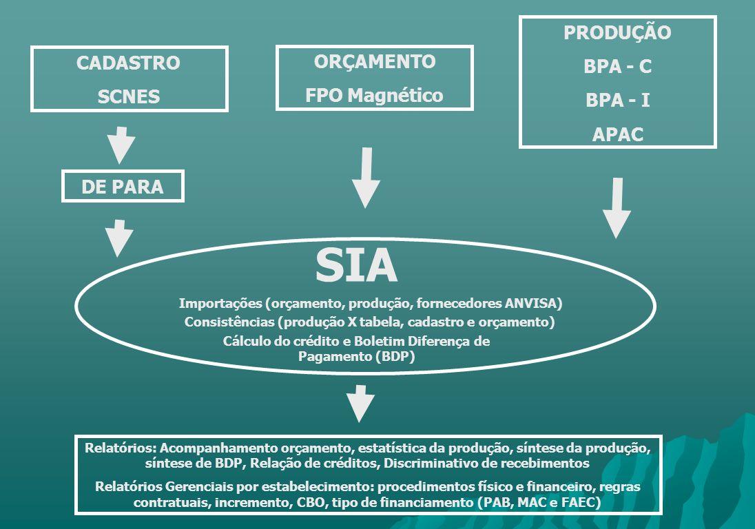 SIA PRODUÇÃO BPA - C BPA - I CADASTRO ORÇAMENTO SCNES FPO Magnético