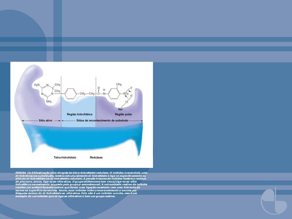 FIGURA 10. 63Inativação sítio-dirigida de tetra-hidrofolato redutase