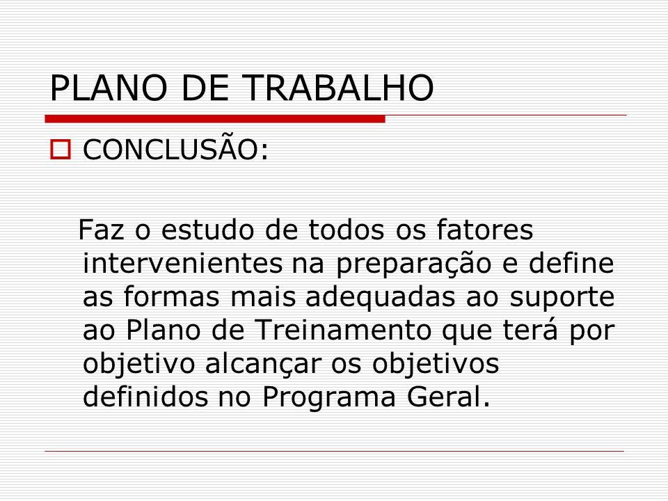 PLANO DE TRABALHO CONCLUSÃO: