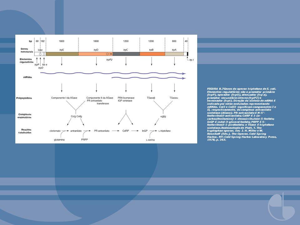 FIGURA 8. 7Genes do operon triptofano de E. coli