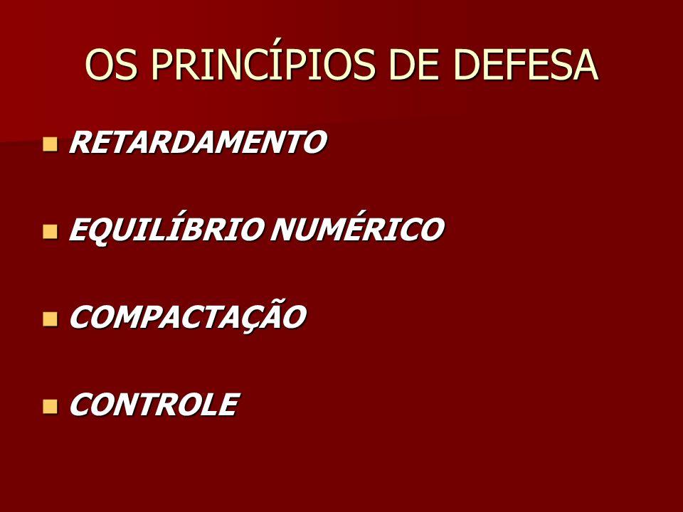 OS PRINCÍPIOS DE DEFESA