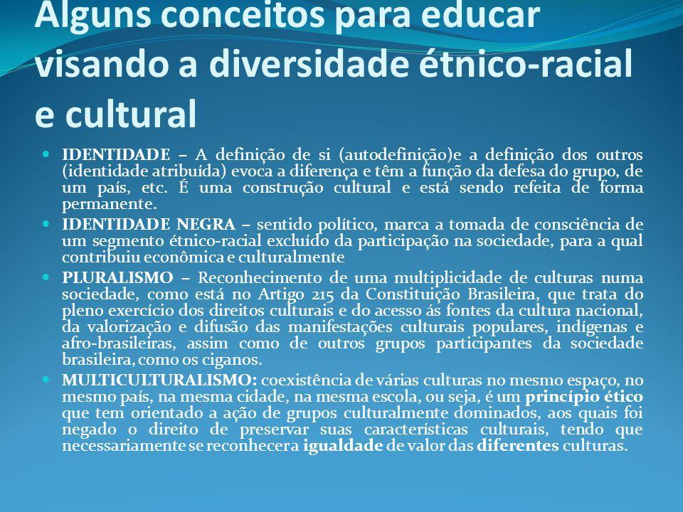 Alguns conceitos para educar visando a diversidade étnico-racial e cultural