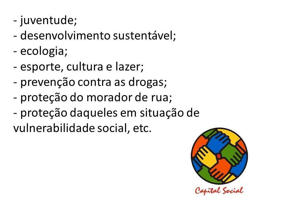 - juventude;- desenvolvimento sustentável; - ecologia; - esporte, cultura e lazer; - prevenção contra as drogas;