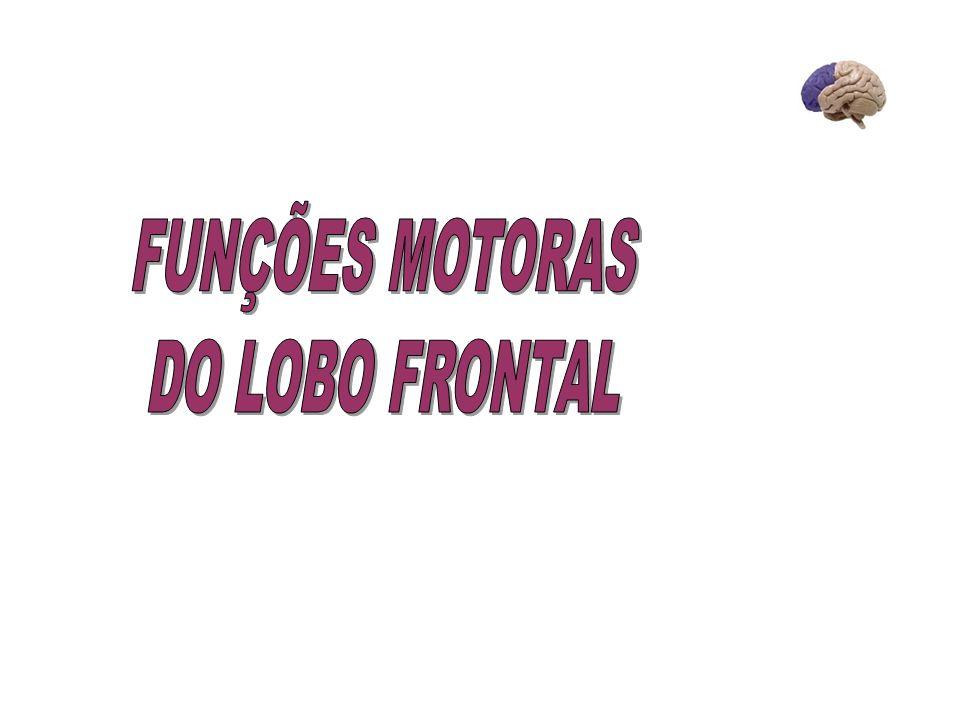 FUNÇÕES MOTORAS DO LOBO FRONTAL