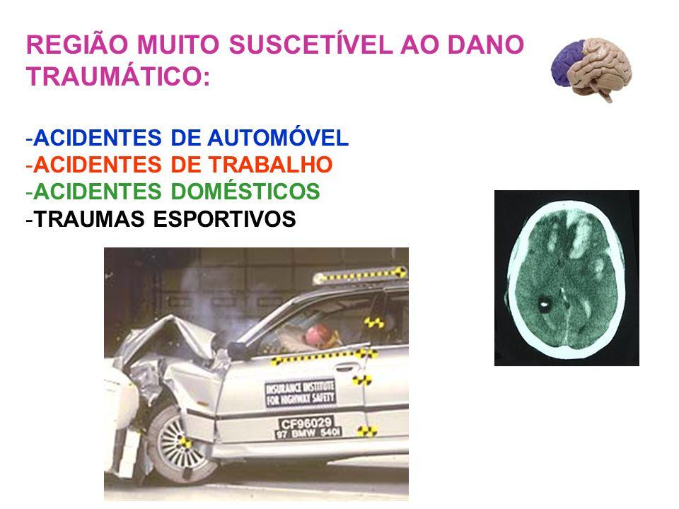 REGIÃO MUITO SUSCETÍVEL AO DANO TRAUMÁTICO: