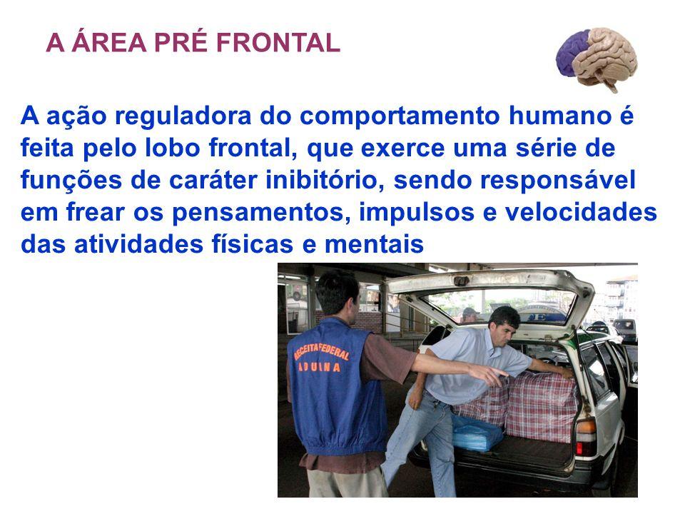 A ÁREA PRÉ FRONTAL A ação reguladora do comportamento humano é. feita pelo lobo frontal, que exerce uma série de.