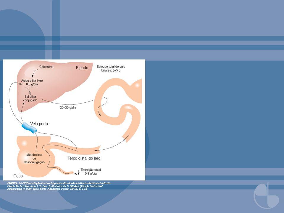 FIGURA 26. 35Circulação êntero-hepática dos ácidos biliares