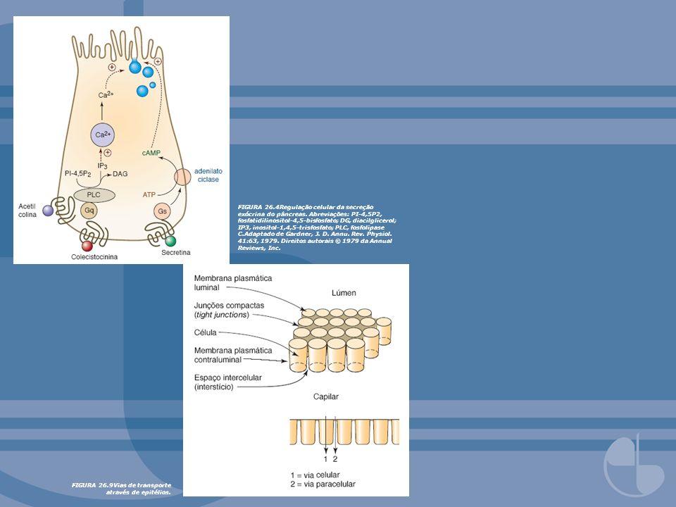 FIGURA 26. 4Regulação celular da secreção exócrina do pâncreas