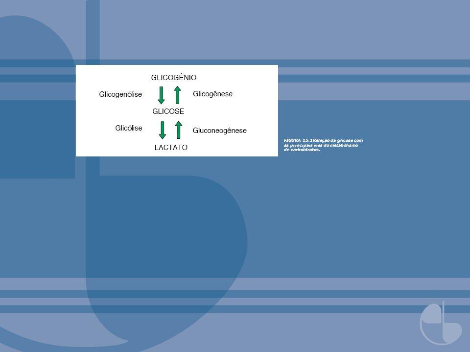 FIGURA 15.1Relação da glicose com as principais vias do metabolismo de carboidratos.