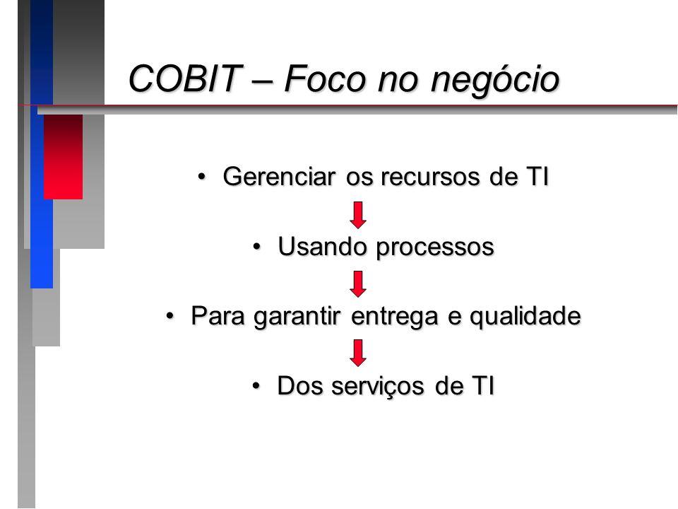 COBIT – Foco no negócio Gerenciar os recursos de TI Usando processos