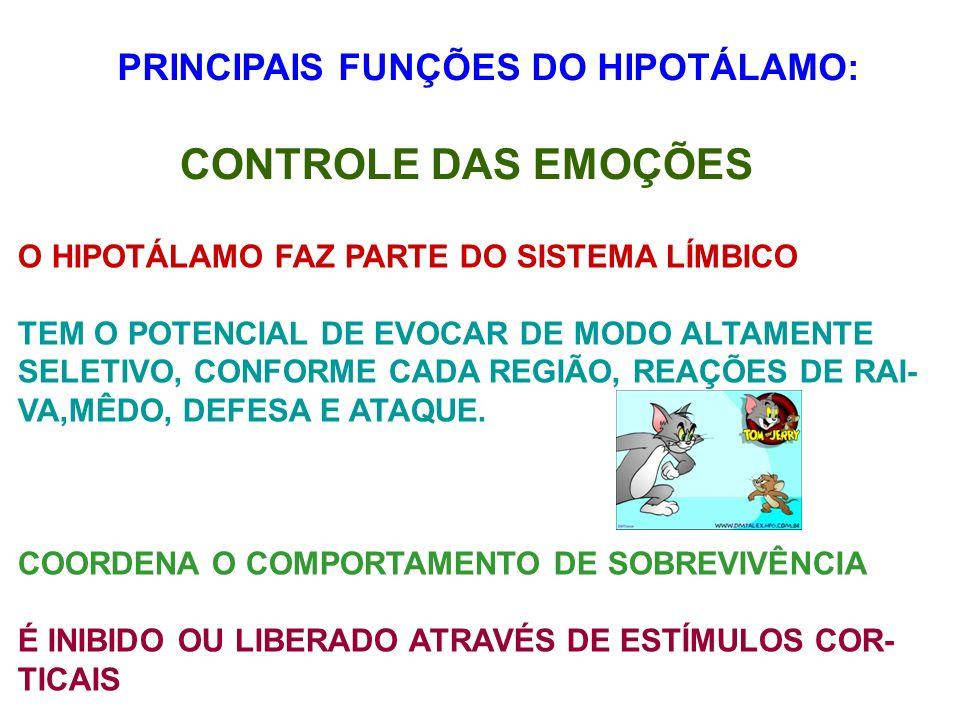 CONTROLE DAS EMOÇÕES PRINCIPAIS FUNÇÕES DO HIPOTÁLAMO: