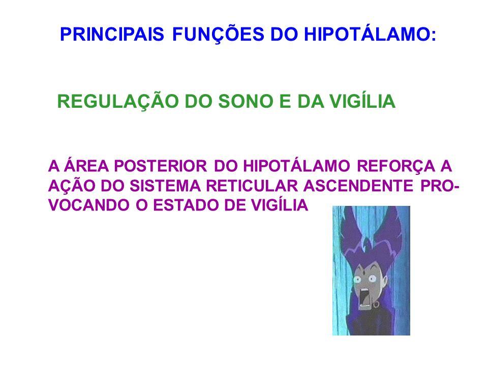 PRINCIPAIS FUNÇÕES DO HIPOTÁLAMO: