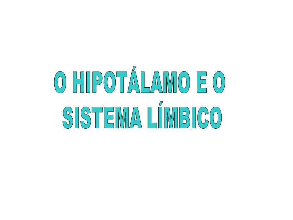 O HIPOTÁLAMO E O SISTEMA LÍMBICO