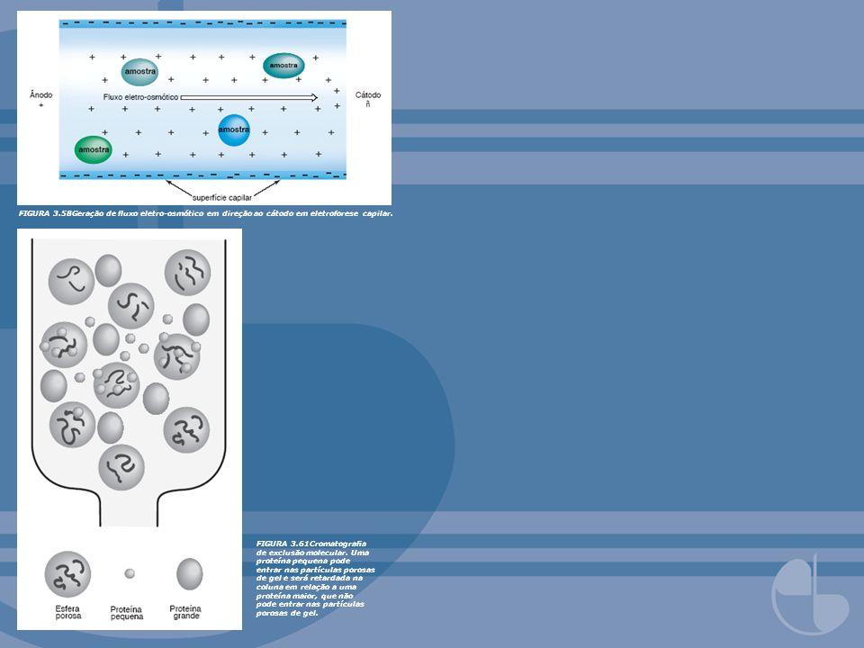 FIGURA 3.58Geração de fluxo eletro-osmótico em direção ao cátodo em eletroforese capilar.