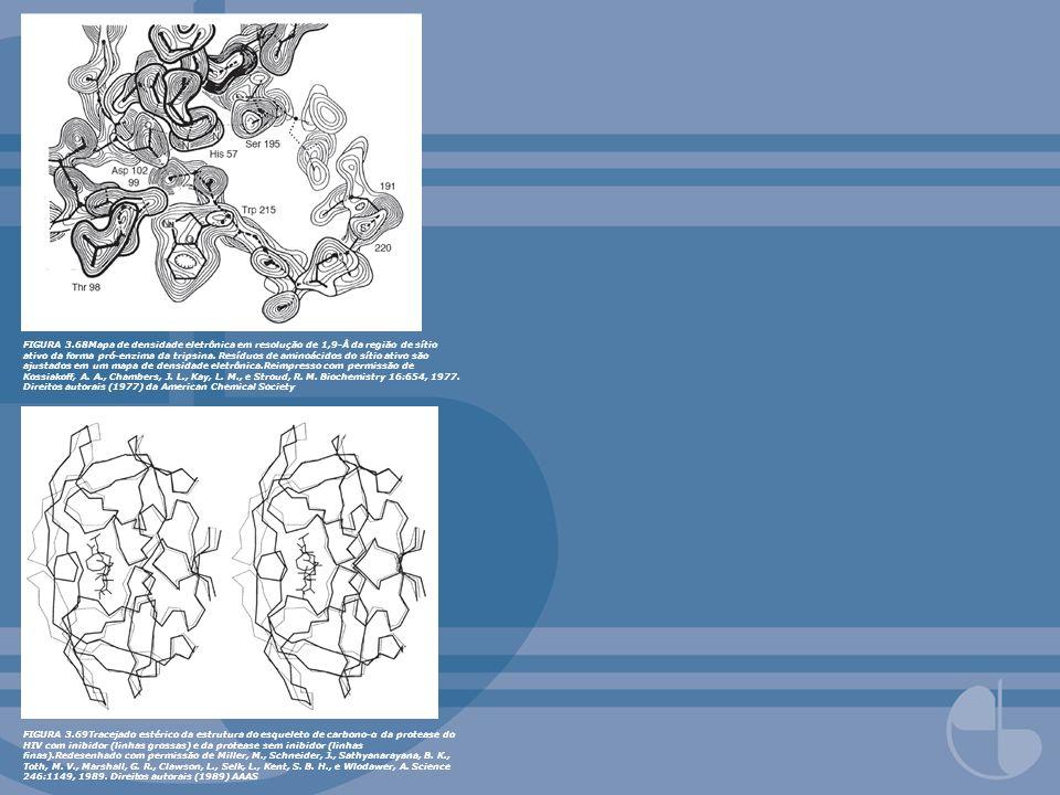 FIGURA 3.68Mapa de densidade eletrônica em resolução de 1,9-Å da região de sítio ativo da forma pró-enzima da tripsina. Resíduos de aminoácidos do sítio ativo são ajustados em um mapa de densidade eletrônica.Reimpresso com permissão de Kossiakoff, A. A., Chambers, J. L., Kay, L. M., e Stroud, R. M. Biochemistry 16:654, 1977. Direitos autorais (1977) da American Chemical Society