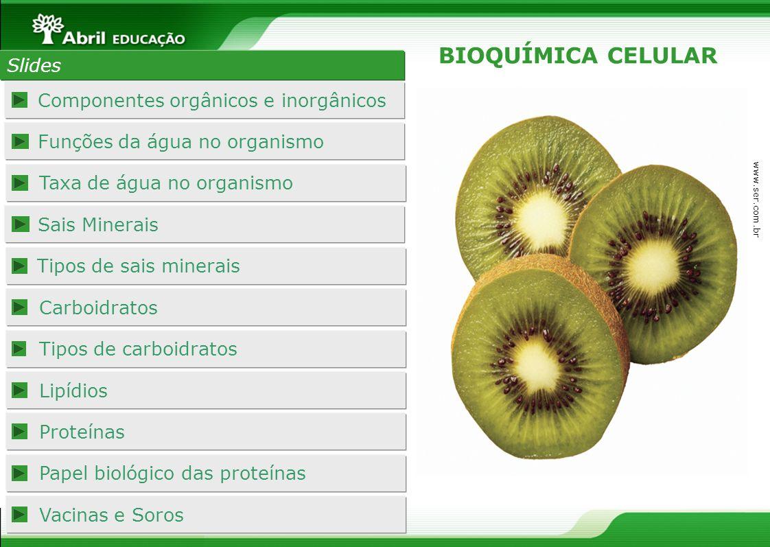 BIOQUÍMICA CELULAR Slides Componentes orgânicos e inorgânicos