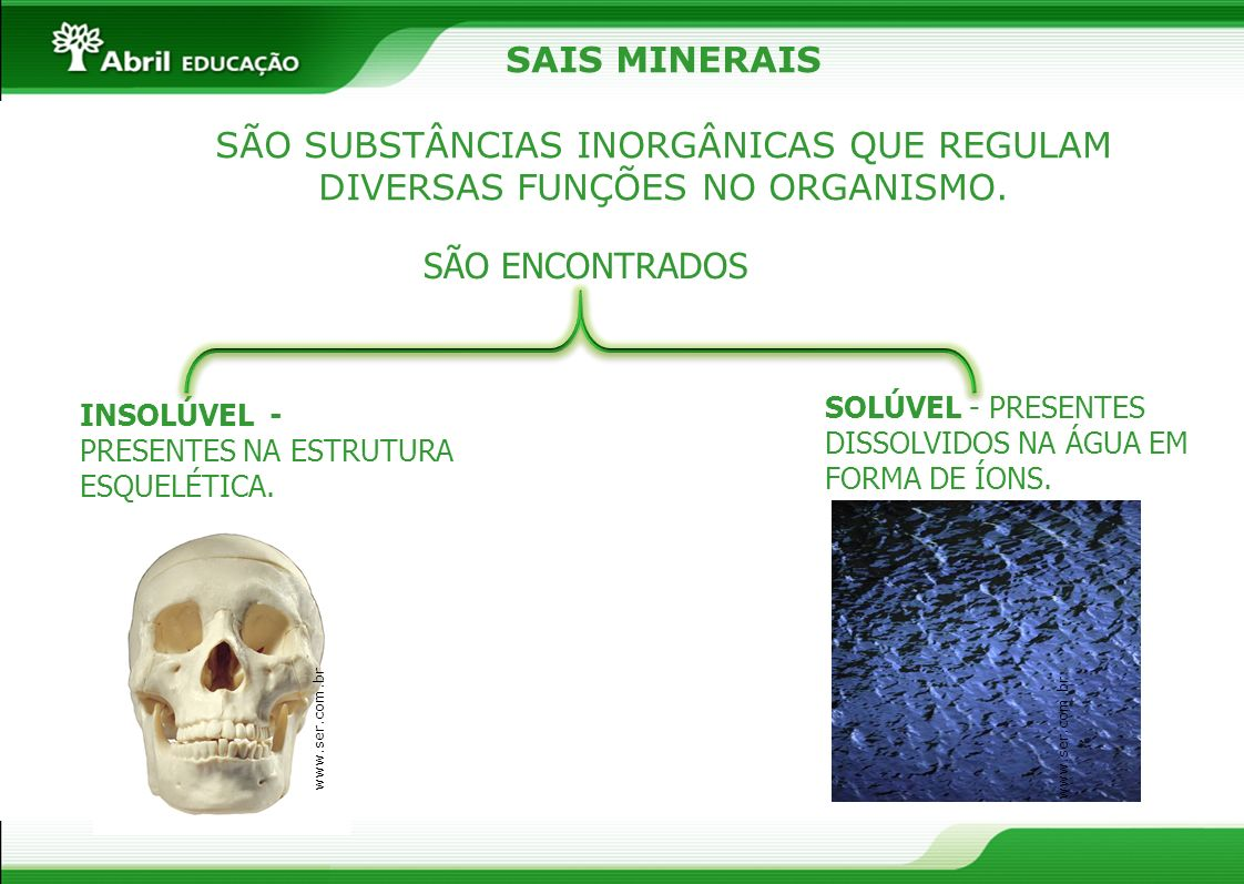 SÃO SUBSTÂNCIAS INORGÂNICAS QUE REGULAM DIVERSAS FUNÇÕES NO ORGANISMO.