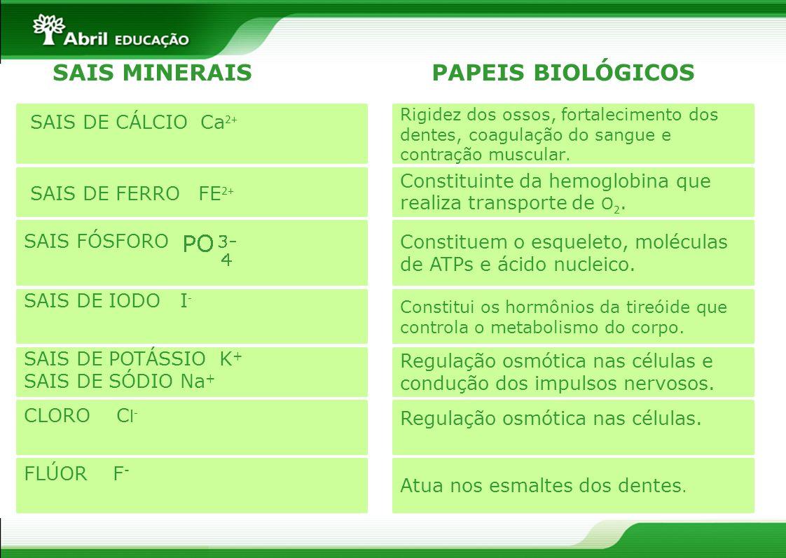 SAIS MINERAIS PAPEIS BIOLÓGICOS SAIS DE CÁLCIO Ca2+