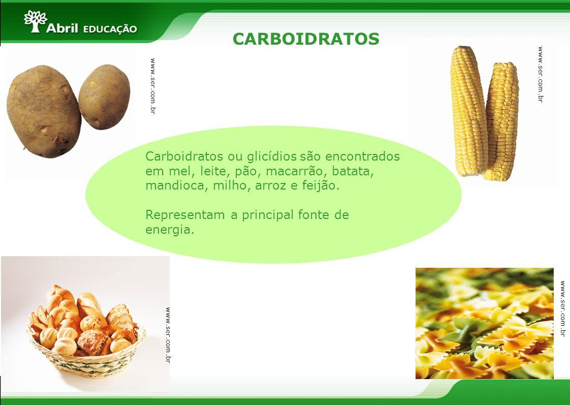 CARBOIDRATOS Carboidratos ou glicídios são encontrados