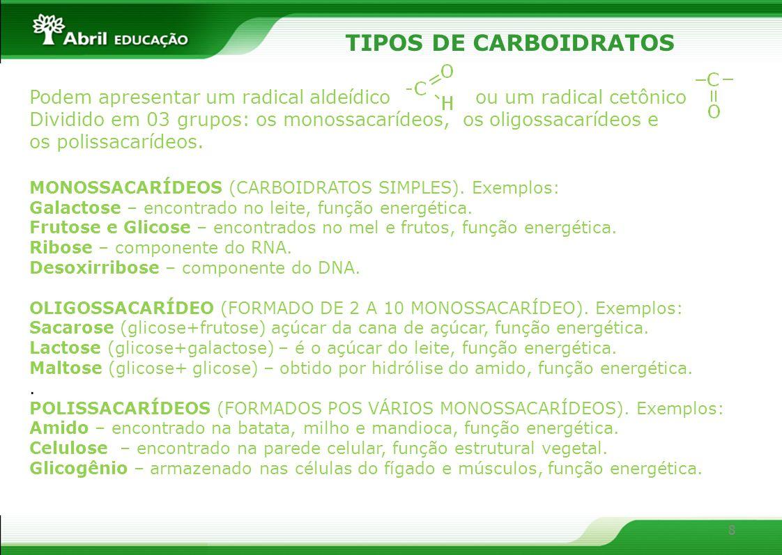 TIPOS DE CARBOIDRATOS Podem apresentar um radical aldeídico ou um radical cetônico.