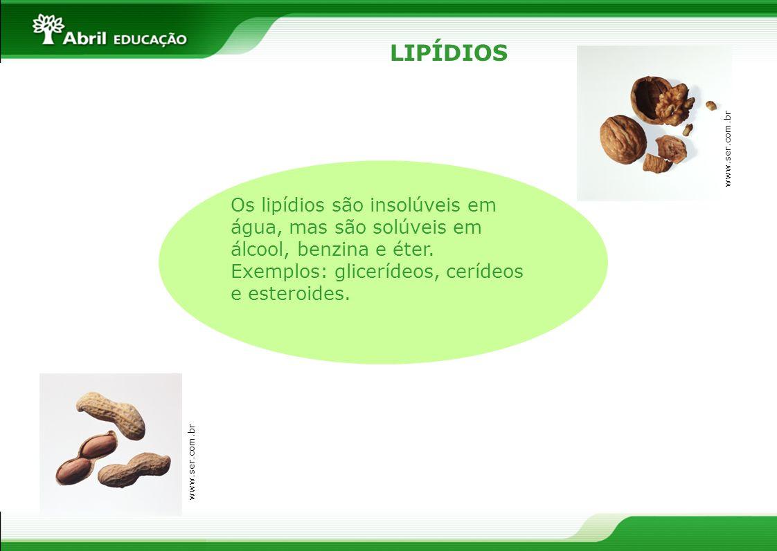 LIPÍDIOSwww.ser.com.br. Os lipídios são insolúveis em água, mas são solúveis em álcool, benzina e éter.