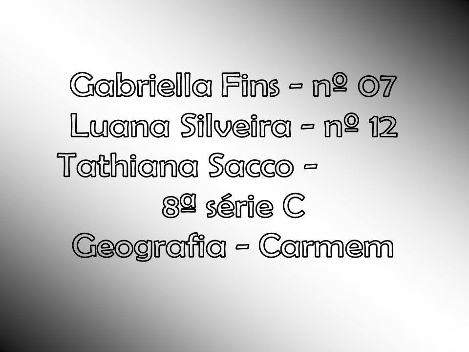 Gabriella Fins - nº 07 Luana Silveira - nº 12 Tathiana Sacco - nº 24 8ª série C Geografia - Carmem