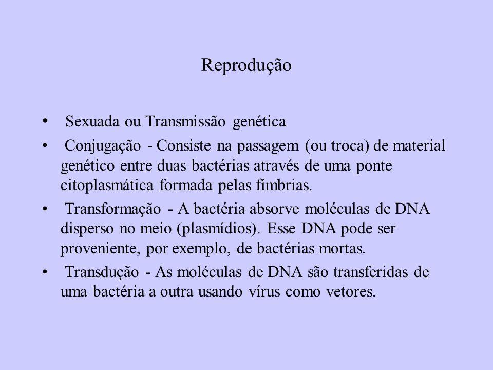 Reprodução Sexuada ou Transmissão genética